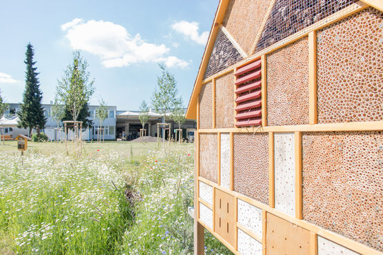The insect hotels in the GEZE biotope provide a safe haven for bees, bumble bees and other insects.