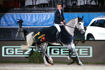 international riding show